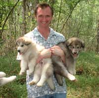 Hudson's Malamutes - Walt Foreman (Director) with Hudson's puppies at the movie Sparkle and Tooter