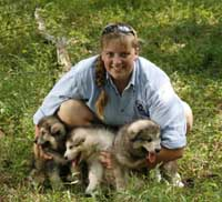 Hudson's Malamutes - Sparkle and Tooter - Jolene with puppies prior to filming