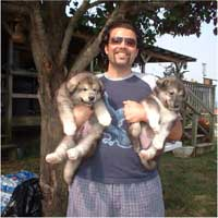 Hudson's Malamutes - Robbie Davis (Tooter) with Hudson's puppies at the movie Sparkle and Tooter